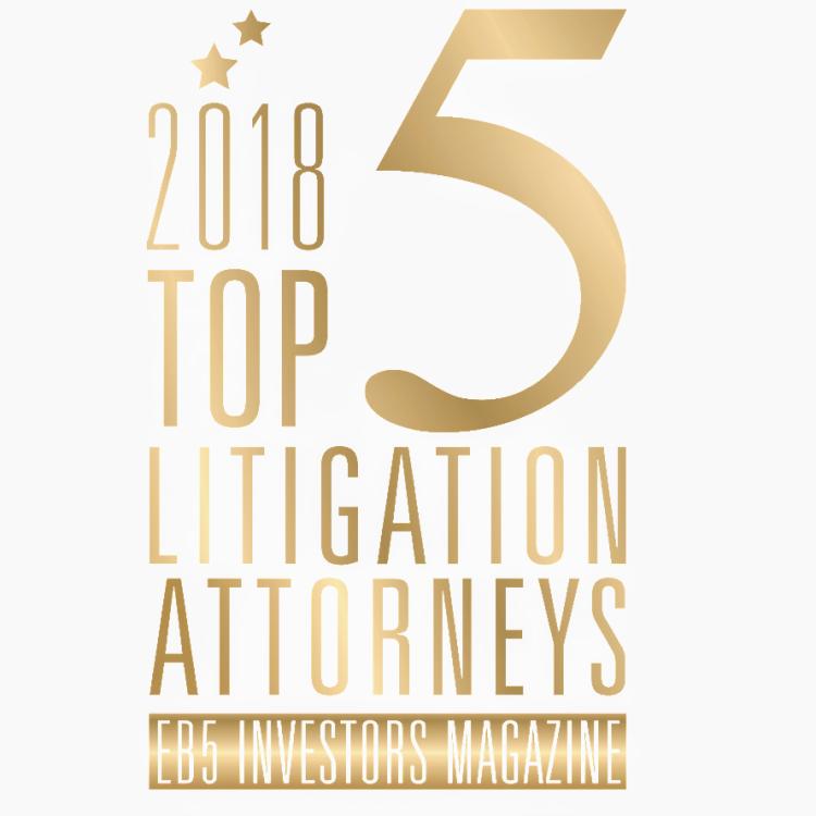 litigationpics_2